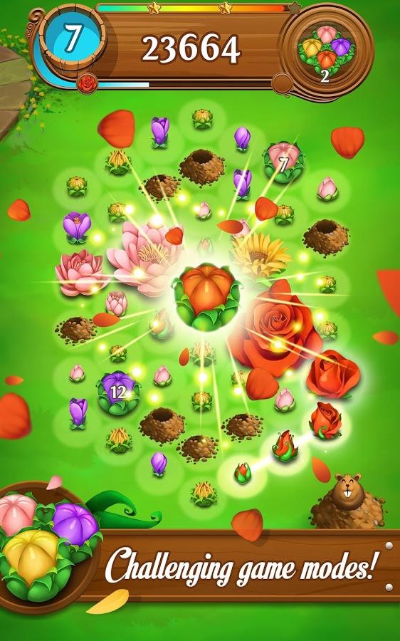 Blossom Blast14