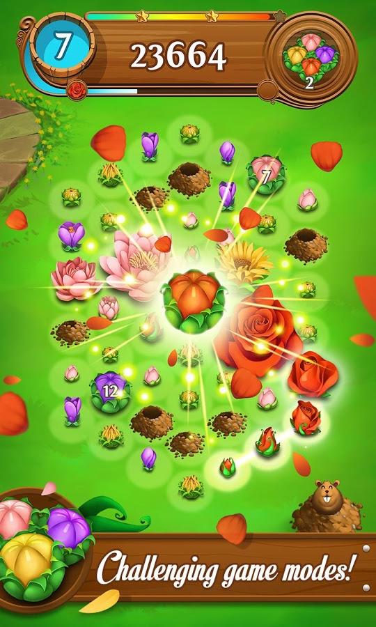 Blossom Blast2